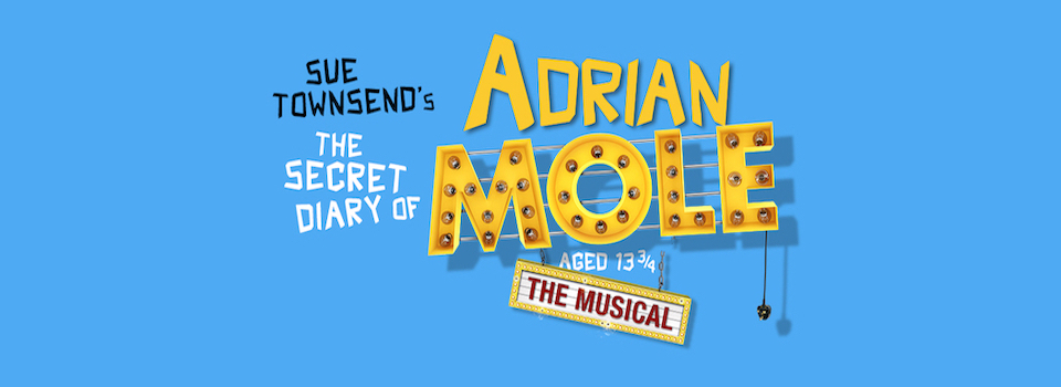 THE SECRET DIARY OF ADRIAN MOLE